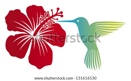 hummingbird (colibri) and red hibiscus flower
