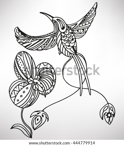 Hummingbird (colibri). Hand-drawn with ethnic pattern. Coloring page - isolated on a white background. Zendoodle patterns. Vector illustration.