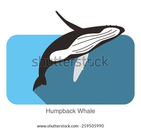 Humpback Whales swimming in the sea, animal flat icon - stock vector