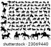 Hundred of horse siluetas in different poses - stock photo