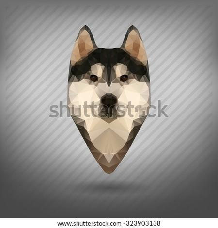 Husky vector polygon, abstract triangle   - stock vector
