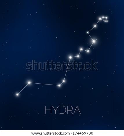 Hydra constellation in night sky - stock vector