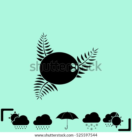 Icon of coconut on white background. All elements coconut for web design and decoration of greeting cards. Vector.