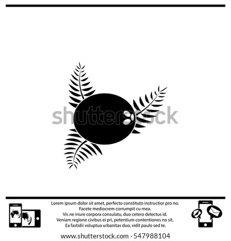 Icon of coconut on white background. All elements coconut for web design and decoration of greeting cards.