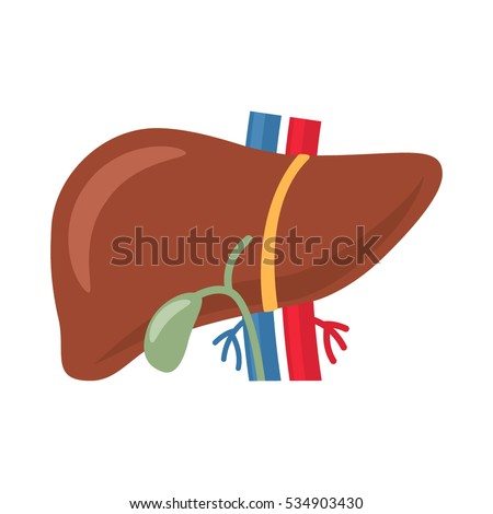 Icon Plane Human Liver Style Easy Stock Vector 534903430 Shutterstock