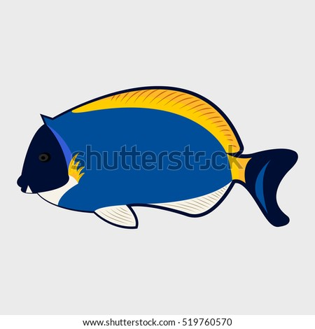 Icon reef fish isolated on white background.