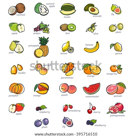 Icon set of fruits, hand drawn style - stock vector