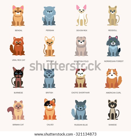 Breed Stock Images, Ro...