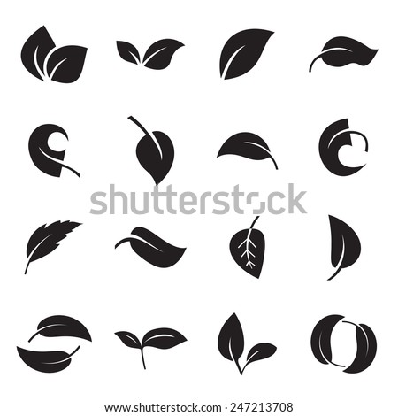 Icons of leaves. Vector illustration - stock vector