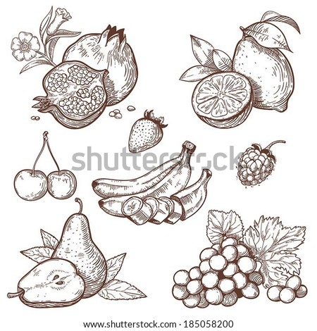 Icons of sweet fruits and berries on a white background  - stock vector