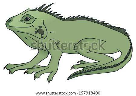 iguana cartoon - stock vector