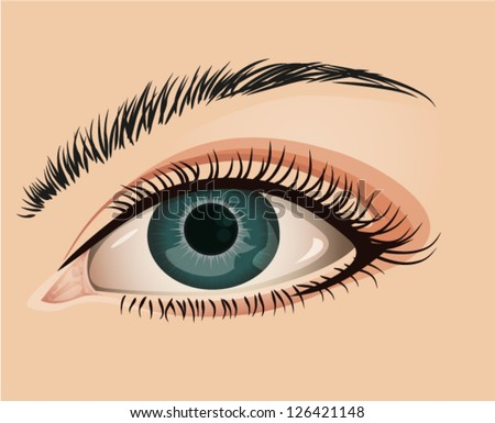 Illustration a female eye in a close-up view - stock vector