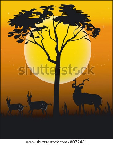 Illustration Animal of Africa - Vector