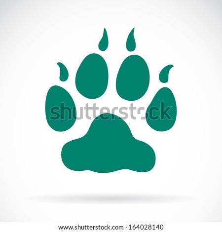 Illustration animals paws print on a white background - stock vector