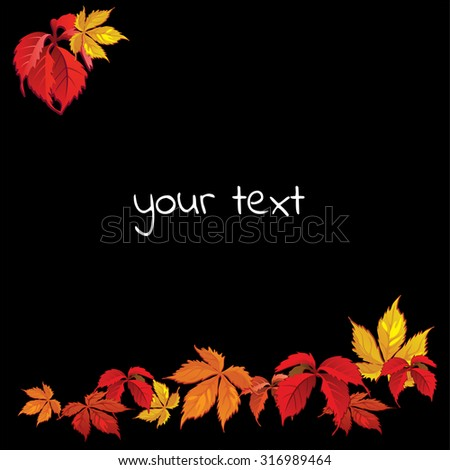 Illustration autumn theme on a black background. The image of multicolored leaves of the maiden vintage. Your text. Vector.