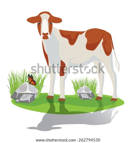 illustration. calf on pasture - stock vector
