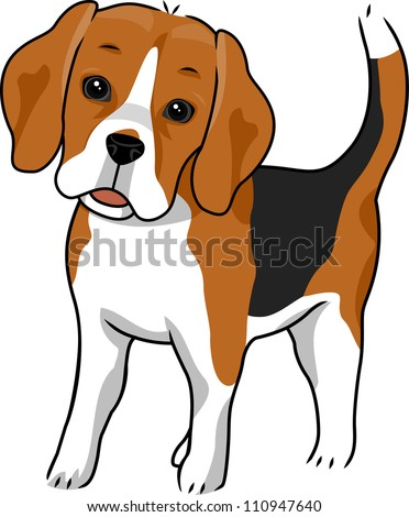 Illustration Featuring a Cute and Curious Beagle - stock vector