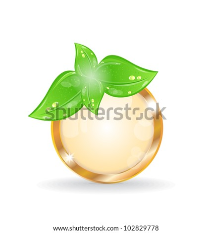 Illustration golden circle frame with eco leaves - vector - stock vector