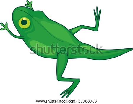 Stock Images Similar To ID 53115085 Tadpole Cartoon