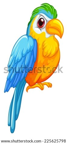 Illustration of a close up parrot - stock vector