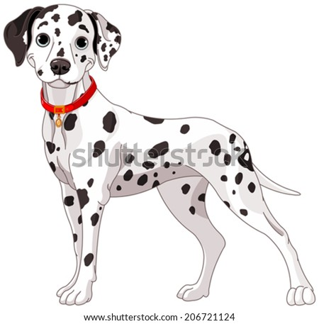 Illustration of a cute Dalmatian dog all attention - stock vector