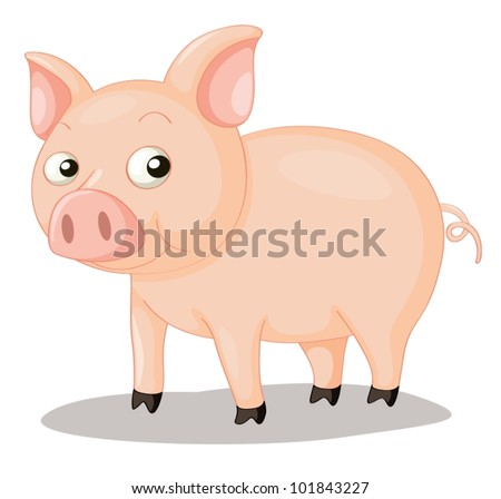 Illustration of a cute pig on white
