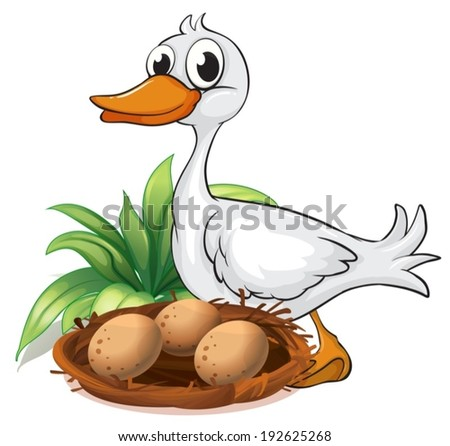 Illustration of a duck beside her nest on a white background - stock vector