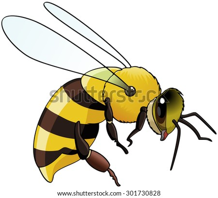 Illustration of a flying bee - Isolated on white - stock vector