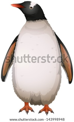 Illustration of a gentoo penguin - stock vector