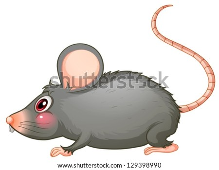 Illustration of a gray rat on a white background - stock vector