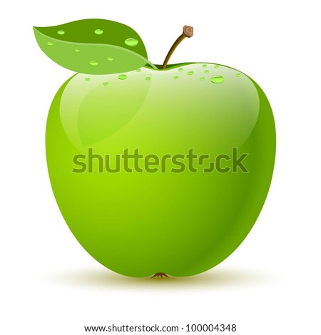 Illustration of a green apple on white background. Vector. - stock vector