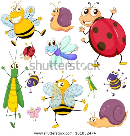 Illustration of a group of insects on a white background - stock vector