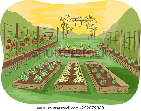 Illustration of a Kitchen Garden Lined Up With Fruits and Vegetables - stock vector