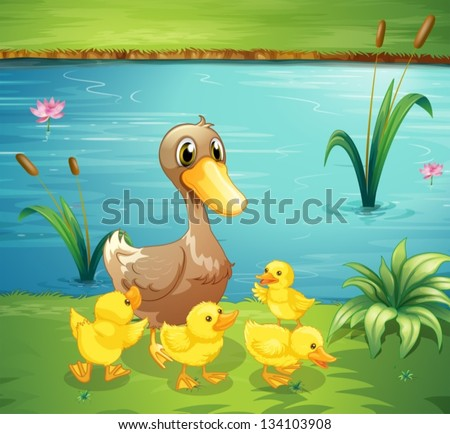 Illustration of a mother duck with her ducklings in the river - stock vector