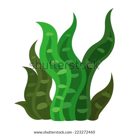 Illustration of a seaweed vector - stock vector