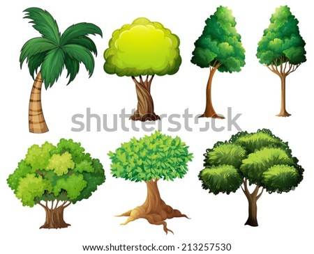 Illustration of a set of different trees - stock vector