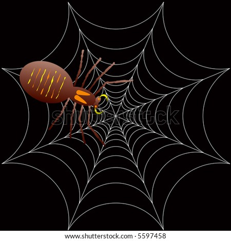 illustration of a spooky spider for halloween or as a background - stock vector