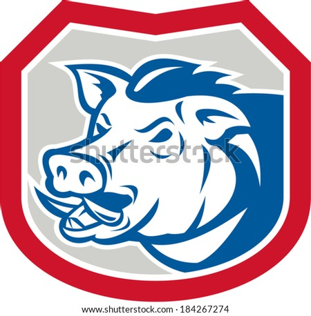 Illustration of a wild pig boar  facing side set inside shield crest on isolated background done in retro style.