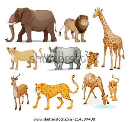illustration of Animals in on a white background - stock vector