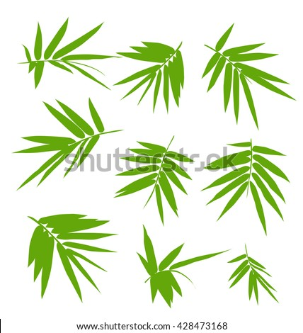 Illustration of bamboo leaves set