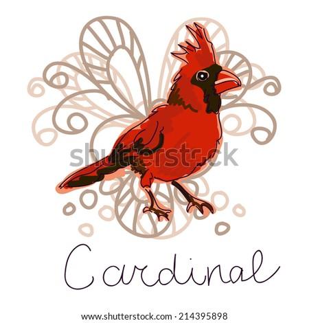 Illustration of Cardinal bird on white - stock vector
