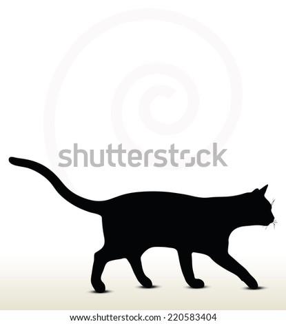 cat walking stock images royaltyfree images  vectors
