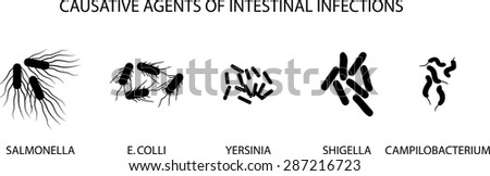ILLUSTRATION OF CAUSATIVE AGENTS OF ACUTE INTESTINAL INFECTIONS