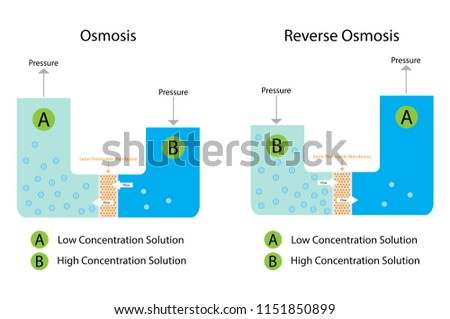 Illustration chemistry osmosis reverse osmosis diagram stock vector illustration of chemistry osmosis and reverse osmosis diagram ccuart Gallery