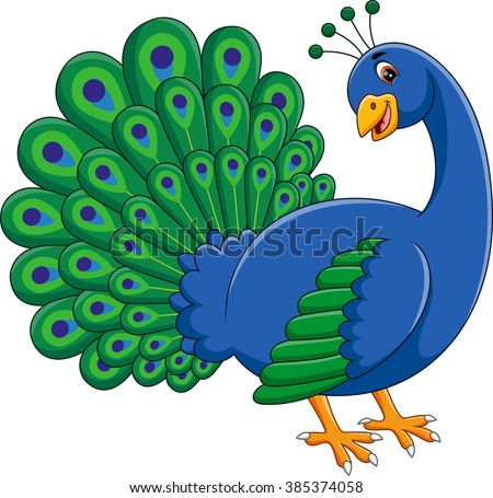 Peacock Cartoon Stock Images Royalty Free Images