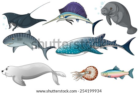 Illustration of different kind of ocean creatures - stock vector