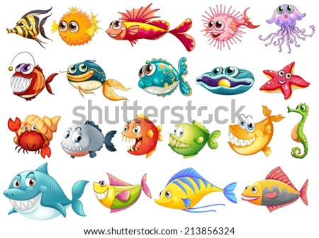 Illustration of different kinds of fish - stock vector