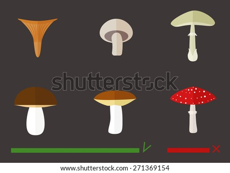 Illustration of edible and poisonous mushrooms. - stock vector