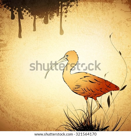 Illustration of Eudocimus ruber or Red Ibis Vintage Grunge Background - stock vector