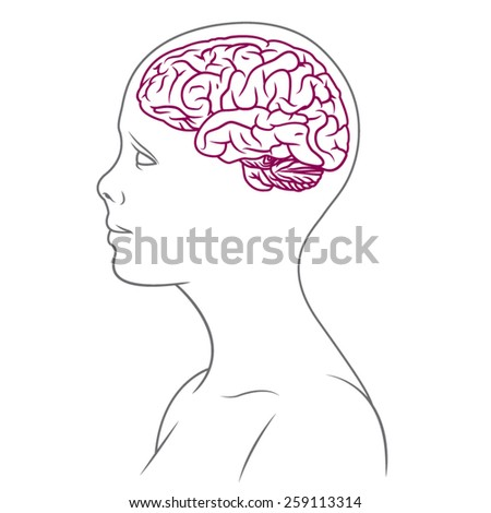 Illustration of female body with brain. - stock vector